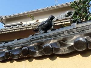 小鳥の壁2.JPG