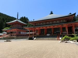 東塔と阿弥陀堂.jpg