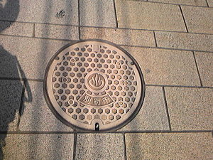 Image946.jpg